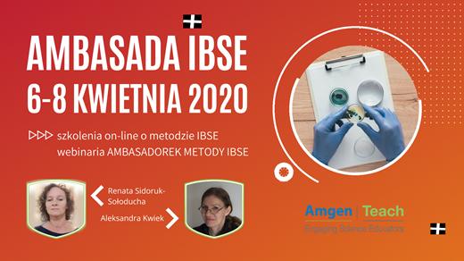 Ambasada IBSE